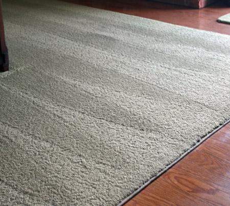 carpet_edited-1